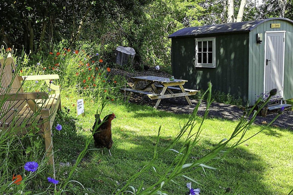 YHA Wooler Garden
